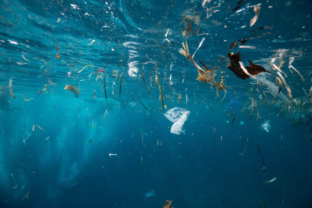 海に流れ出すプラスチック