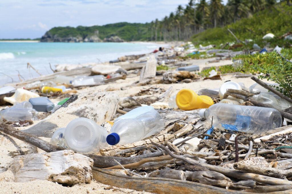 魚よりもプラスチックごみが海に溢れる未来