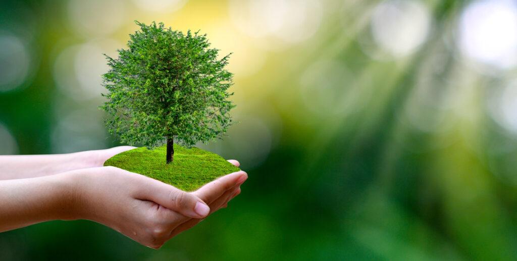 環境プロジェクトを通した社会貢献活動