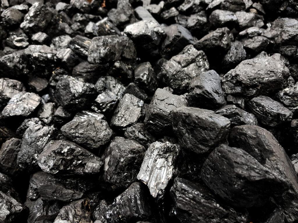 化石燃料「fossil fuels」