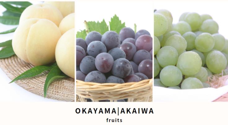 「旬のフルーツが好き!」の思いから地域おこし協力隊へ転身・岡山へ移住